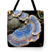 Blue Turkeytail Fungi Tote Bag