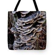 Blue Turkeytail Tree Tote Bag