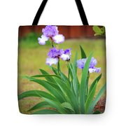 Blue Violet Irises  Tote Bag