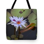 Blue Water Lilies Of Belize Tote Bag