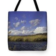 Blue Waters Of The Marsh Tote Bag