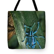 Blue Weevel Tote Bag