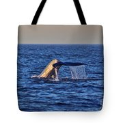 Blue Whales Tail Tote Bag