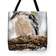 Blue-winged Kookaburra Tote Bag