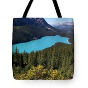 Blue Wolf In The Valley Tote Bag