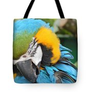 Blue/yellow Parrot Tote Bag