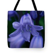 Bluebell 2 Tote Bag