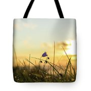 Bluebell In The Sunrise Tote Bag