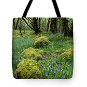 Bluebell Woods Tote Bag