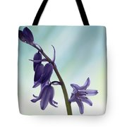 Bluebells 2 Tote Bag