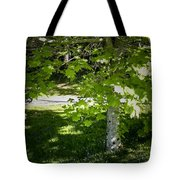 Bluebells In Killarney National Park Ireland Tote Bag