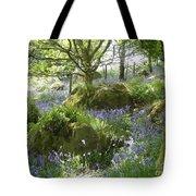 Bluebells On Dartmoor Tote Bag