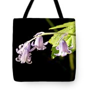 Bluebells Under The Sun Ray. Tote Bag