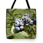 Blueberries On Blueberry Bush Tote Bag