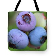 Blueberries On The Vine 2 Tote Bag