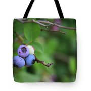Blueberries On The Vine 4 Tote Bag