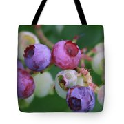 Blueberries On The Vine 5 Tote Bag