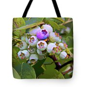 Blueberries On The Vine 7 Tote Bag