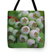 Blueberries On The Vine 9 Tote Bag