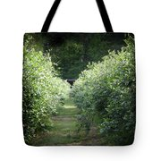 Blueberry Bushes Tote Bag