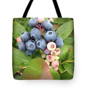 Blueberry Group Tote Bag
