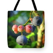 Blueberry Morning Tote Bag