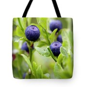 Blueberry Shrubs Tote Bag