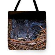 Bluebird Babies Dreaming Of Flight Tote Bag