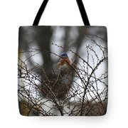 Bluebird In Briars Tote Bag