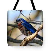 Bluebird In May Tote Bag