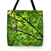 Bluebird Looking About Tote Bag