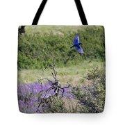 Bluebird Pair In Blickleton Tote Bag