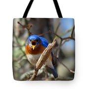 Bluebird Temper Tote Bag