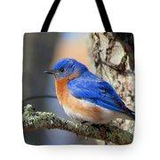 Bluebird Vibrance Tote Bag