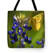 Bluebonnet And Butterfly Tote Bag
