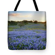 Bluebonnet Sunrise And A Windmill In Texas 1 Tote Bag