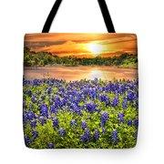 Bluebonnet Sunset  Tote Bag