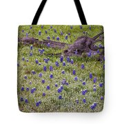 Bluebonnets And Fallen Tree - Texas Hill Country Tote Bag