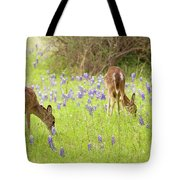 Bluebonnets And Whitetails Tote Bag