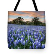 Bluebonnets On A Spring Evening 403-1 Tote Bag