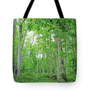 Blueboonet Swamp Baton Rouge La Tote Bag
