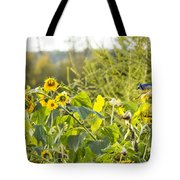 Bluejay And Sunflowers Tote Bag
