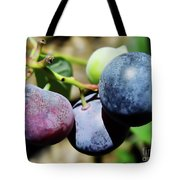 Blues In The Florida Berries Tote Bag