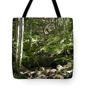Bluestone State Park Mountain Stream West Virginia Tote Bag