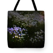 Bluets In Momentary Light Tote Bag