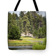 Bluff Lake Ca 13 Tote Bag
