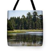 Bluff Lake Ca 6 Tote Bag