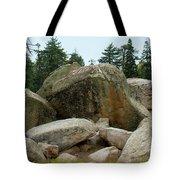 Bluff Lake Ca Boulders 3 Tote Bag