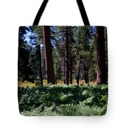 Bluff Lake Ca Fern Forest 4 Tote Bag