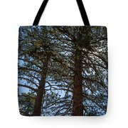 Bluff Lake Ca Through The Trees 3 Tote Bag